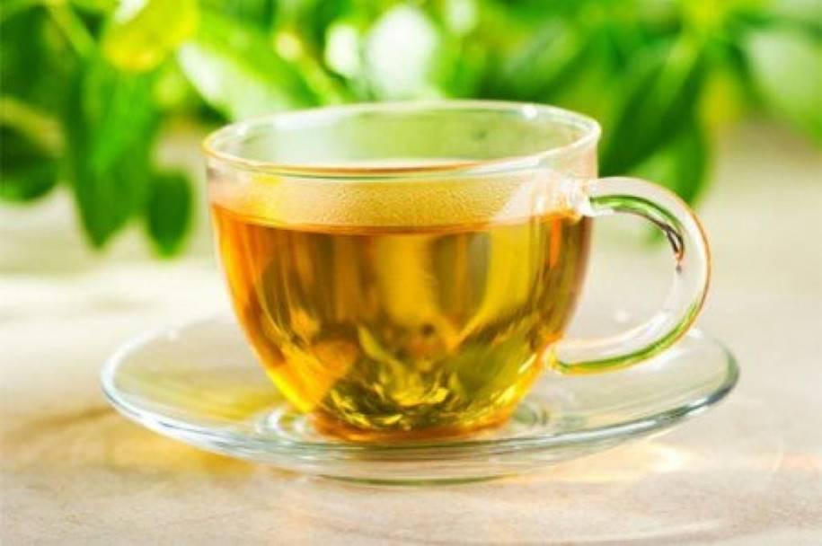 Como fazer o chá de moringa oleífera