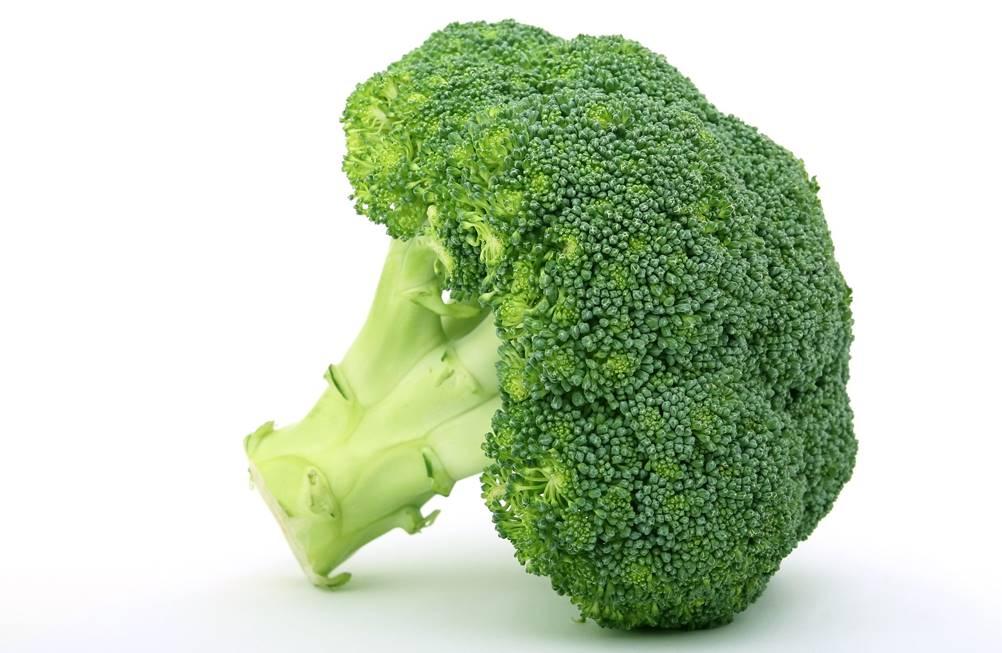 Vida sem Estresse - Brócolis